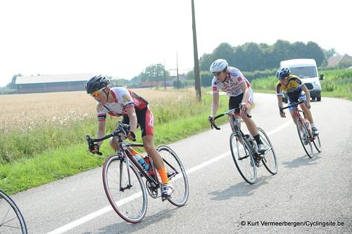 Geel Oosterlo  (200)