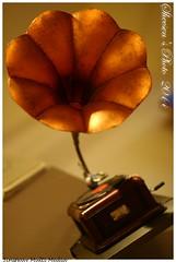 IMG_1742 (sheesen) Tags: canoneos350d description   m42eos  pentaxsmctakumar50mm114        20140730