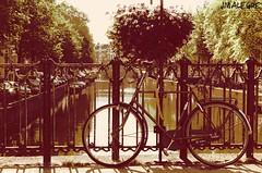 Amsterdam, bicis y canales