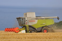 Claas Lexion 760 Terra Trac Combine Harvester Cutting Winter Barley (Shane Casey CK25) Tags: county ireland winter horse irish green field barley work golden hp corn power cut cove farm cork farming grain working harvest straw till crop combine cutting land crops roberts farmer blade agriculture dust terra pulling contractor chaff collect blades harvester collecting tilling trac harvesting 760 claas agri lexion tillage harvest2014