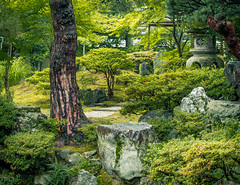 Gonaitei 2 (campra) Tags: japan garden kyoto palace imperial