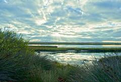 Sunday Morning at Bolsa Chica Wetlands (Machalez (Dawn)) Tags: morning summer sun beach water reflections chica huntington wetlands bolsa sunrays sages