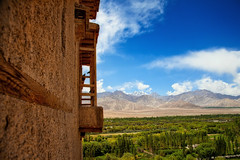 A different perspective (sachiniscool) Tags: sky india birds clouds landscape fields leh ladakh sheypalace