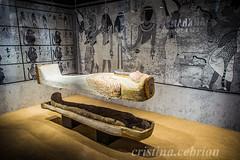 egyptian museum barcelona (cebr