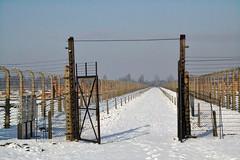Auschwitz (004)