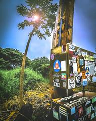 stick'em up!!!! (Jesus_LuvzU) Tags: art hawaii sticker jesus maui hdr saves blacksandbeach canon70d