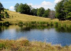 csend és békesség / the peaceful lakeside (debreczeniemoke) Tags: blue autumn pond lakeside transylvania bog transilvania tó erdély muskeg ősz kék tópart láp tőzegláp canonpowershotsx20is gutinhegység tăulchendroaiei gutinmountains