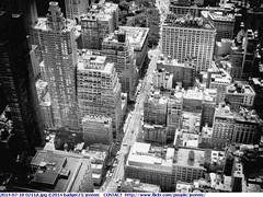 2014-07-18 0211A (Badger 23 / jezevec) Tags: new york newyorkcity newyork nuevayork     nowyjork  niujorkas      thnhphnewyork         ujorka          dinasefrognewydd neiyarrickschtadt  tchiaqyorkiniqpak  evreknowydh   lteptlyancucyork  nuorkheri    niuyoksiti