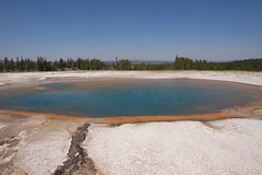 DSC08646 (sylviagreve) Tags: unitedstates yellowstonenationalpark yellowstone wyoming 2013