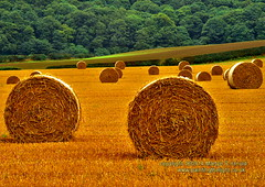 Hay bales at Newton under Roseberry (Martyn (Northants/North East)) Tags: autumn field farm fields hay bales