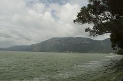 Dian Lake 滇池 (何安妮) Tags: china nature lakes chinadigitaltimes kunming yunnan 中國 大自然 雲南 昆明 滇池 dianlake