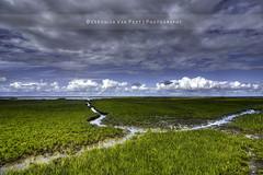 - Winding - (Veronica Van Peet   Photography) Tags: sea sky holland clouds landscape coast nikon thenetherlands wind