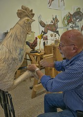 A volunteer carver puts the finishing touches on a proud cockerel for the Albany Community Carousel in Albany, Oregon (mharrsch) Tags: wood sculpture bird chicken animal oregon carousel carving albany rooster woodcarving cockerel mharrsch carouselart albanycarouselproject