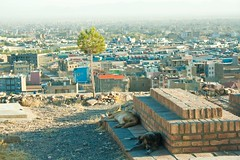 20140914-IMG_3723 (Hassan Reza Khawari) Tags: afghanistan shrine herat   heratcity sayedmokhtar