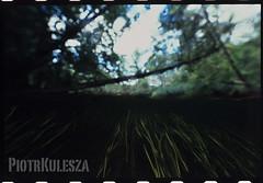 4a Kopie2 (stuartkul) Tags: color mazury natur dia e6 dias sensia nikonos unterwasser slajd nikonosv 1528 nikon9000ed nikkor15mm uw15mm podwodnafotografia