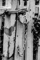 Lock on a Gate (Lo8i) Tags: blackandwhite gate lock williamsburg week8 7daysofshooting blackandwhitewednesday fencesandorgates