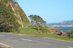 Route touristique de Wellington