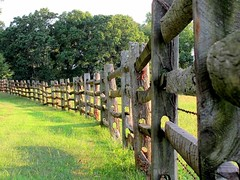 Curving Lines, Split-Rail Fence (Universal Pops (David)) Tags: road wood summer green lines rural fence virginia shadows farm country pasture lane fields agriculture curve splitrail irregularity charlottecourthouse charlottecounty