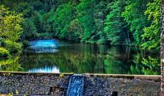 Waterfall at Minas Basin Pulp & Power Co Ltd 1935 (kenmojr) Tags: summer canada green water waterfall energy novascotia atlantic september windsor annapolisvalley maritimes 2014 minasbasin pulppower oldwindsorhighway
