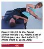 42DY13 (sportEX journals) Tags: stretching rehabilitation fascia massagetherapy sportex sportsinjury sportsmassage sportstherapy sportexdynamics