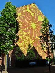 Michael Lin / Pierre De Geyterstraat - 13 juni 2015 (Ferdinand 'Ferre' Feys) Tags: gent ghent gand belgium belgique belgië streetart artdelarue graffitiart graffiti graff urbanart michaellin urbanarte arteurbano ferdinandfeys