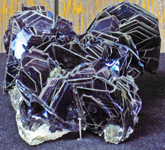 Covellite (latest Cretaceous to earliest Tertiary, 62-66 Ma; Leonard Mine, Butte, Montana, USA) 5 (James St. John) Tags: montana mine butte district mining minerals copper mineral vein leonard sulfide hydrothermal sulfides covellite