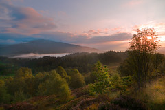 Dukes pass sunrise (Mr_Souter) Tags: 2014 scotland aberfoyle dukespass forest places dawn europe september uk
