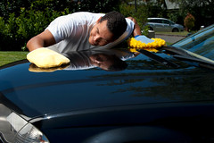 Mobile Auto Detailing in Charlotte NC (mobilecardetailingcharlotte) Tags: car washing cleaning polishing care cleaningcompany glove mitt detailing clean dusting inspector inspecting inspection checking dust copyspace headlight hood bonnet shiny service love windscreen polish polished male people concentration looking auto charlotte nc