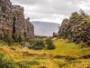 Tectonic Plates (TheSimonBarrett) Tags: iceland lýðveldið ísland þingvellir geology geological thingvellir tectonic rift
