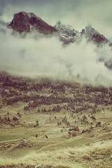 Maana de octubre en el Valle de Benasque. (vicent gimeno) Tags: fuji xe1 fujifilm voigtlander heliar 15mm snapspeed mountains benasque montaa natura