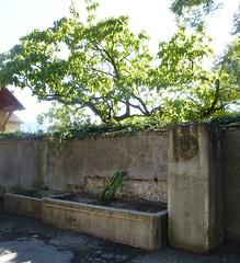 Wasserstelle Anno 1890