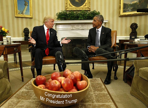 Trump True apples