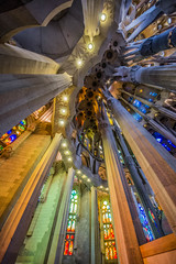 _IGP1128-Modifier (sebraymond2001) Tags: sagrada familia barcelona uga inside