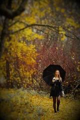 2016-10-23_04-51-46 (karlsson_mari) Tags: hst fall autumn paraply umbrella
