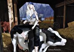 ...Farmville (lukreciamerchiston) Tags: woman outdoor cows outfit blond farm mountains fan chickens ride cap mujer montaas vacas rubia guapa paisaje granja ventilador gallinas straw paja hot