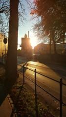 Autumn Sunset (lasser.bernd) Tags: autumnherbst bayernbavaria schwabendeutschland augsburgbayerngermany sunsonne abendevening samsunggalaxys6camerasmartphone dmmerung urban flickr strasestreet trees bume europe sun sol sunset oktober