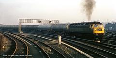 C.03/1971 - Holgate Junction, York. (53A Models) Tags: britishrail brushtype4 class47 1883 diesel freight holgatejunction york train railway locomotive railroad