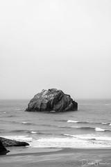 Face Rock - Black and White (darekfarmer) Tags: bw bandonbeach blackwhite darekfarmerphotography facerock fujifilm nature ocean oregon oregoncoast pnw water xt1