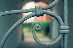 HFF - Curl (J a n W i l l e m) Tags: hff fence nikon 35mm 18 g dof prm abtei abby church bokeh d200 cobweb