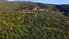 Prato Hill