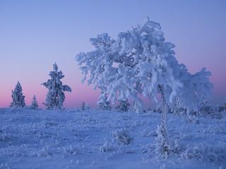 Saariselkä, Finnish Lapland