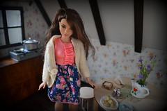 Barbie curvy (pe.kalina) Tags: doll dollhouse mattel barbie latino curvy fashionistas diorama roombox pierogi handmade fimo