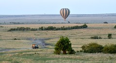 Hot Air Balloon scene over the Masai Mara. (One more shot Rog) Tags: masaimara balloons balloon hotairballoon africa safari kenya migration wildebeestmigration wildebeest zebra savannah wildlife