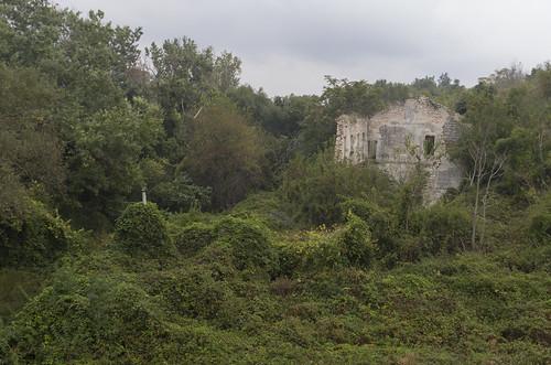 Overgrown ruins, 07.10.2014.