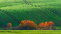 Untitled (Bonnie And Clyde Creative Images) Tags: landscapes canon green autumn beautiful popular poland