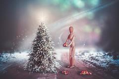 Christmas loading (RoCafe) Tags: christmas winter tree manipulation photomanipulation ps conceptual fantasy subrealism