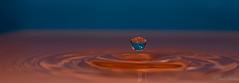 Wassertropfen (Luna_3303) Tags: drops water waterdrop nikon d750 makro