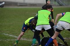 DSC_8859 (mbreevoort) Tags: rfchaarlem rugby rcthedukes brcbreda dioklrc thepickwickplayersdrc hookers goudarfc