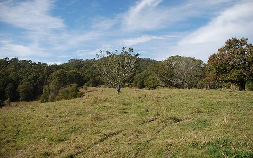 Address available on request, Fernvale NSW 2484
