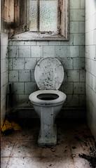 Juego de tronos (Perurena) Tags: vater wc inodoro cuartodebaño bathroom abandono decay ruina azulejos ventana window suciedad urbex urbanexplore